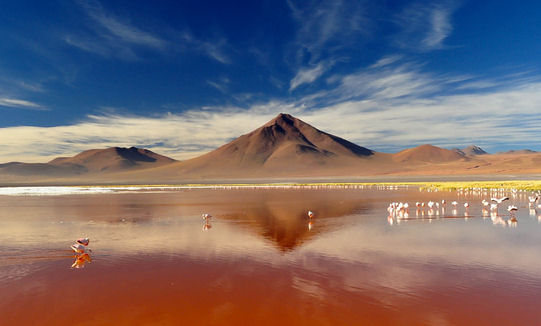 "The Laguna Colorada is also known as the ""Fire Lake"" for obvious reasons"
