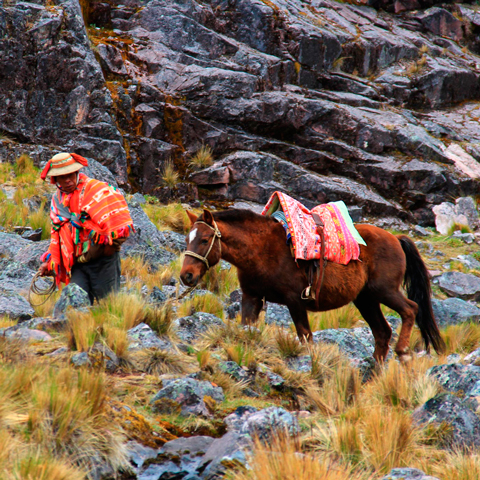 A trek to Lares & Machu Picchu is an incredible way to discover the local region