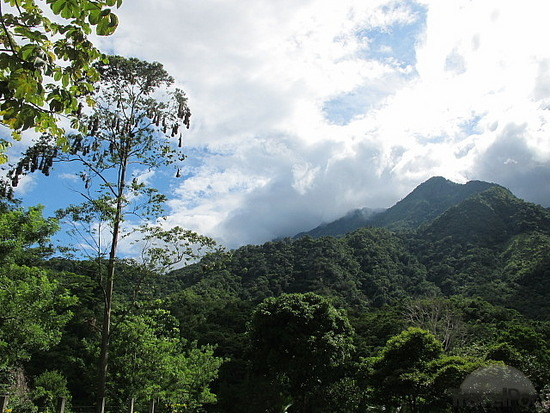 Pico Bonito National Park in Honduras