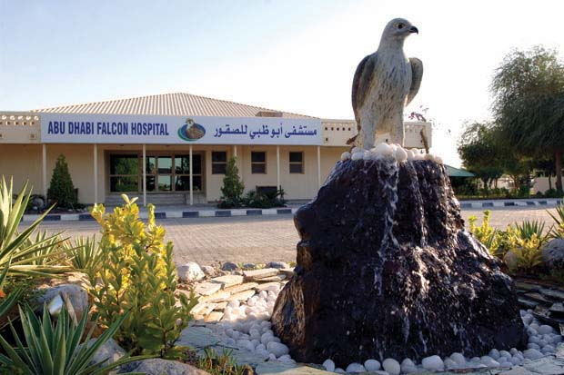 The Falcon Hospital is a popular stop on tours of Abu Dhabi