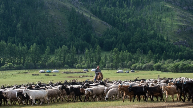 Over 50% of the population of Mongolia still lives the traditional nomadic lifestyle