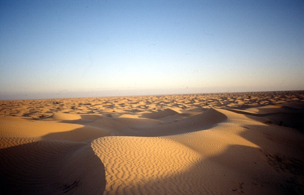 The Sahara is always in motion, a landscape of sand shifted by the winds
