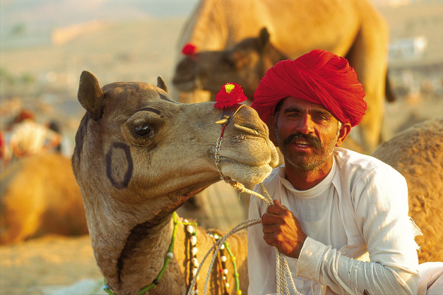 Rajasthan is known for its camel fair and horseback riding